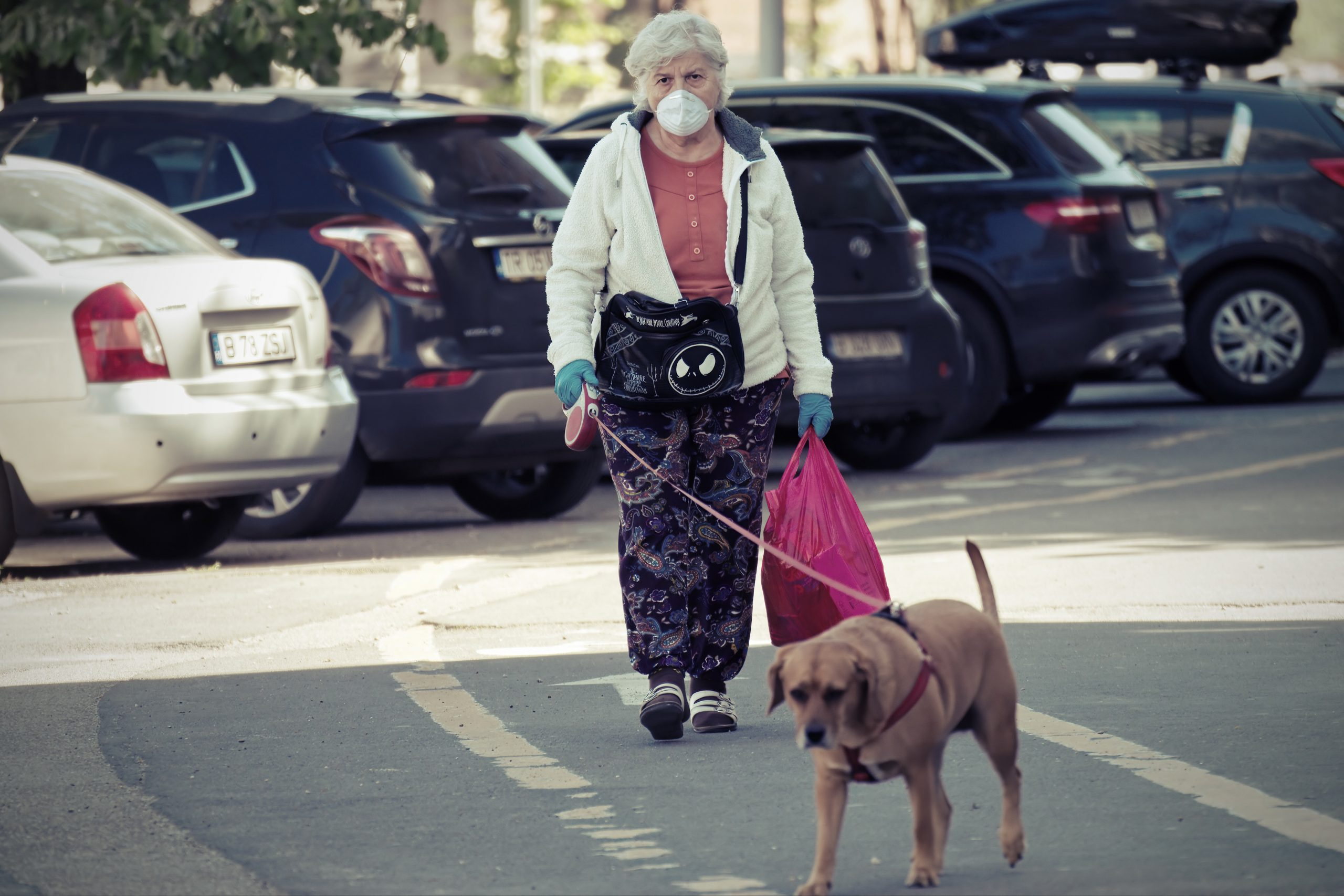 elderly woman walking dog 4168666