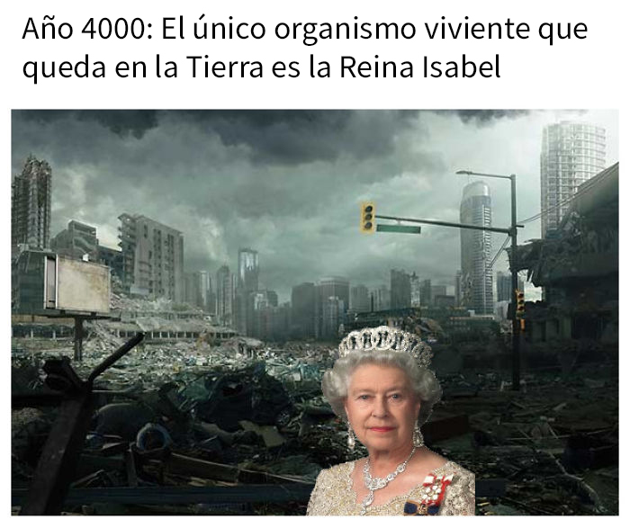 reina 04 5e84b98858da4 700
