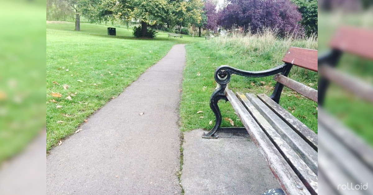 reto viral perro banco parque escondido banner