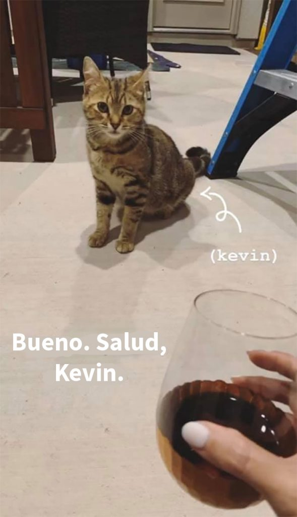 kevin 03