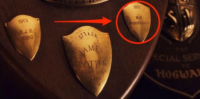 harry potter details 61 5edf70f05f35b 700