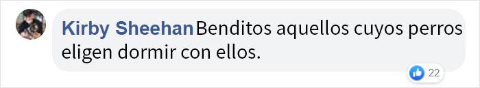 bebeperro 06