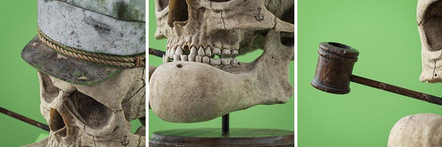 cartoon fossils skulls filip hodass 8 5e60ccc9d7316 880