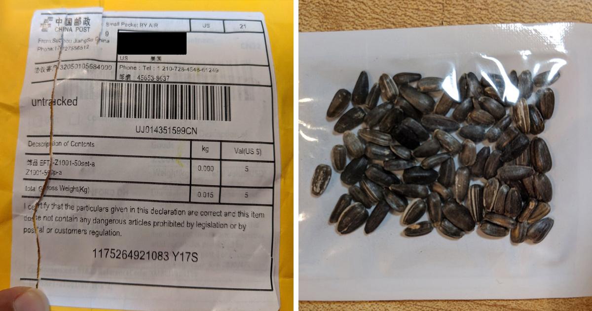 avertissement pas planter graines poste chine