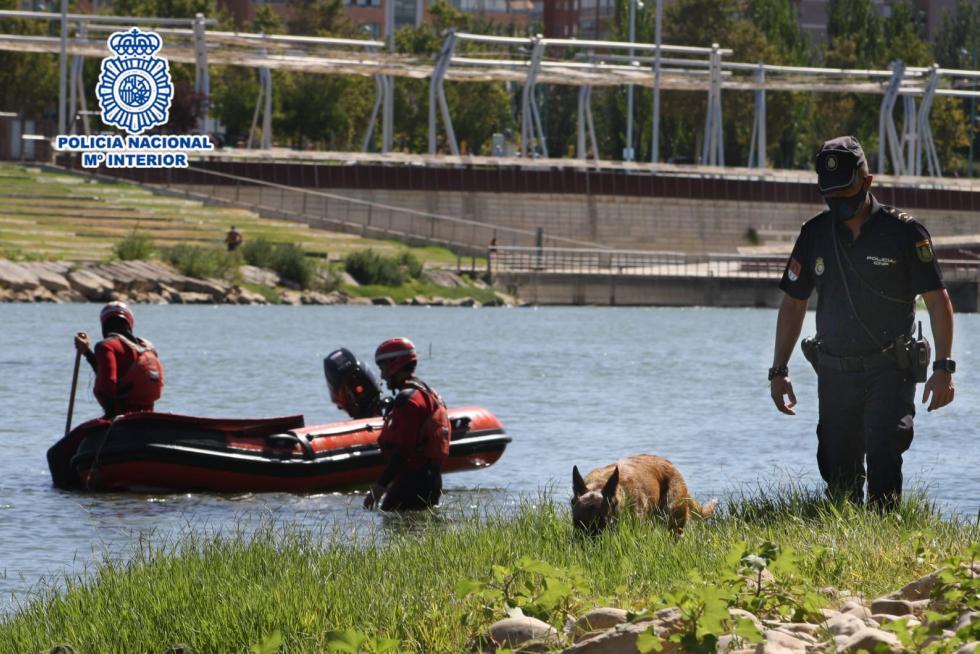 la policia nacional continua con la busqueda de la persona desaparecida este domingo en la ribera del ebro en zaragoza 5